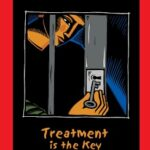 Addiction in Prisons: The Definitive Guide