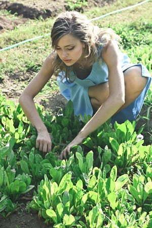 garden mental health