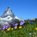 Luxury Rehab in Switzerland
